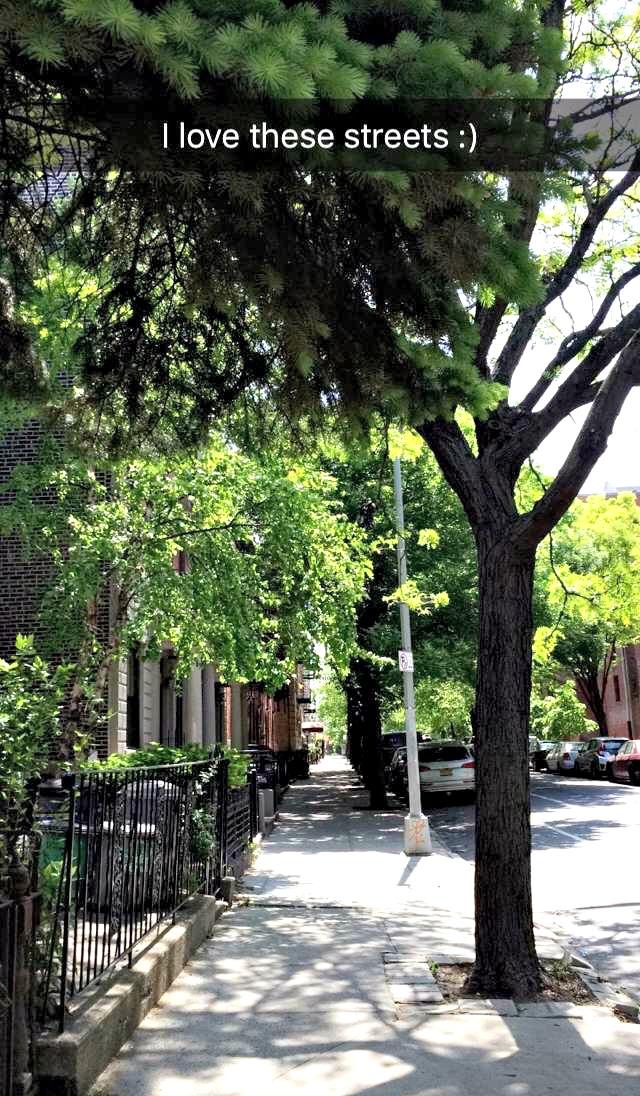 brooklyn - park slope streets