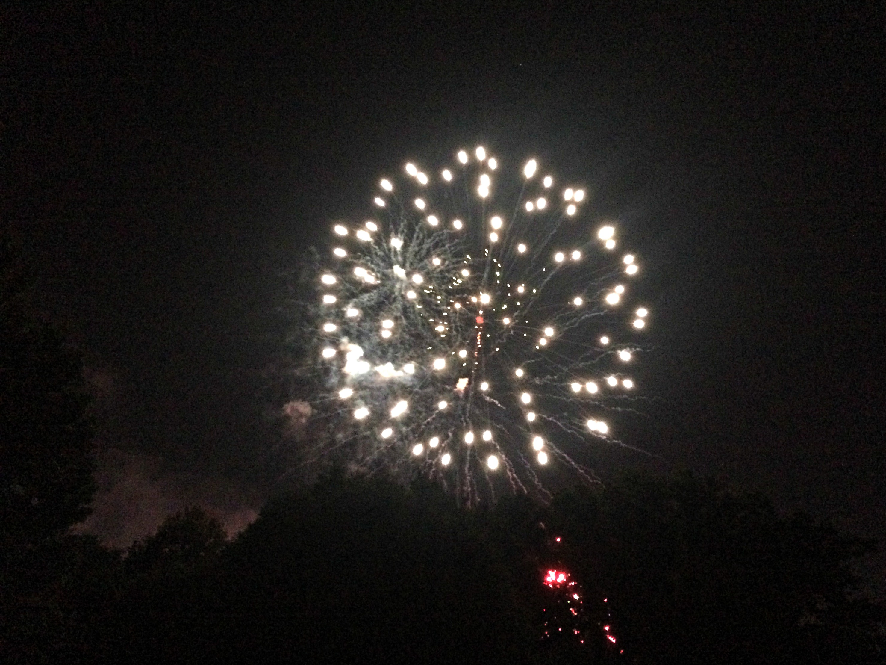 fireworks show prospect park