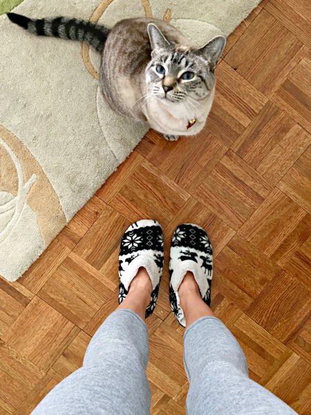leggings and slippers with aspen
