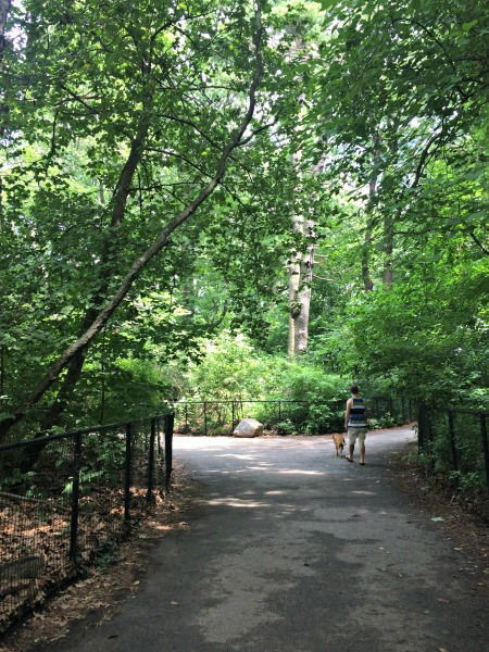Prospect Park, Park Slope, Brooklyn