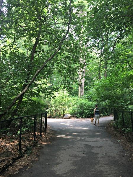 Prospect Park, Park Slope, Brooklyn