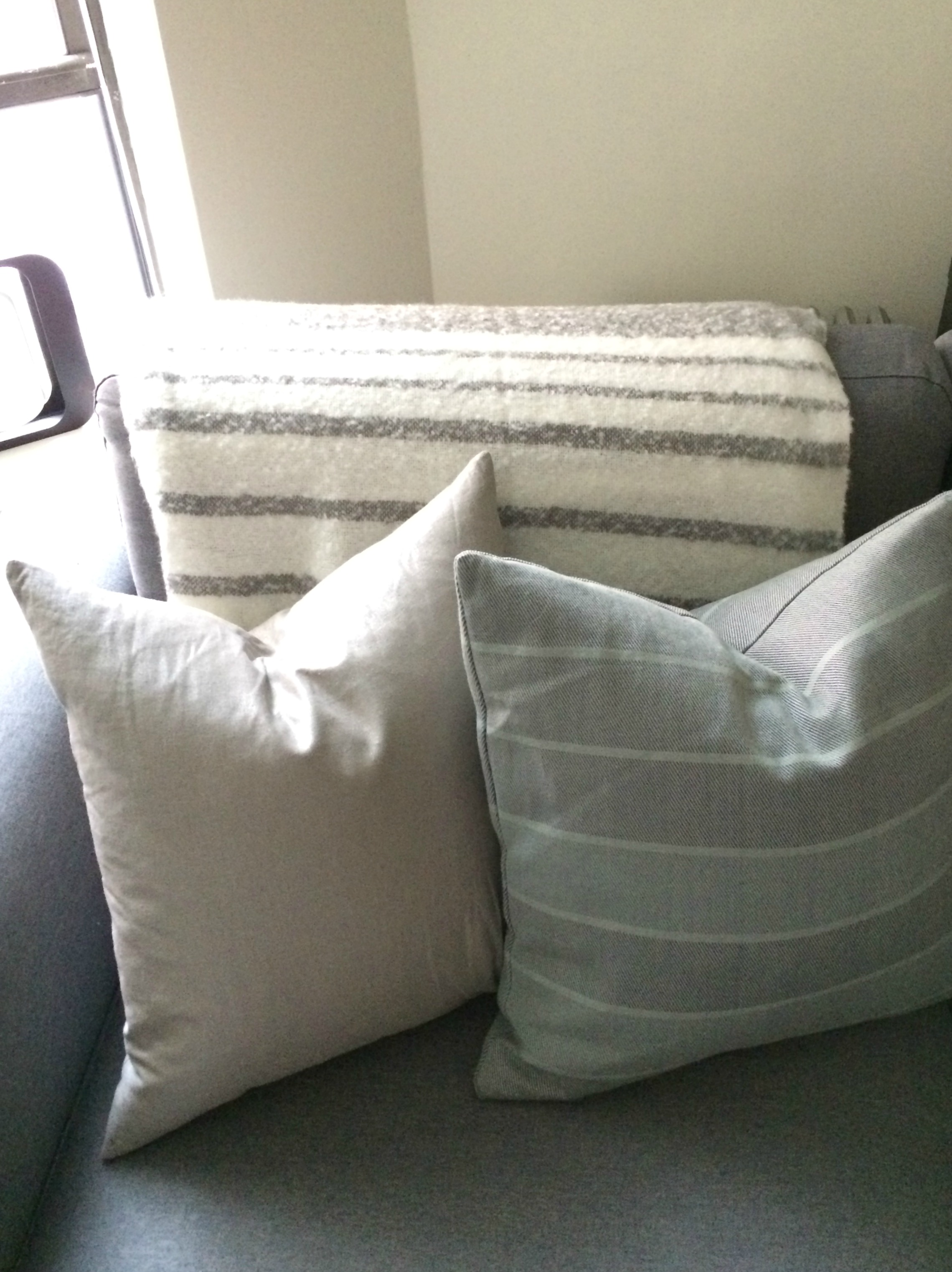Calvin Klein pillows - HomeGoods
