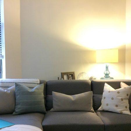 HomeGoods accessories - Calvin Klein pillows