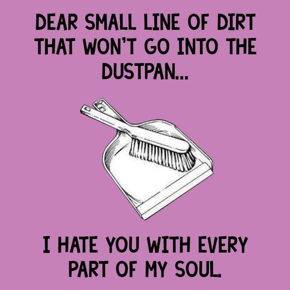 friday funny dust pan