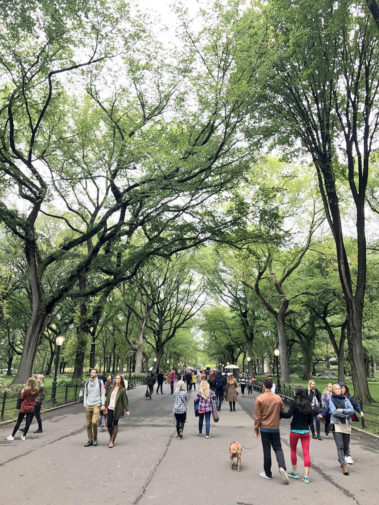 central-park-walk