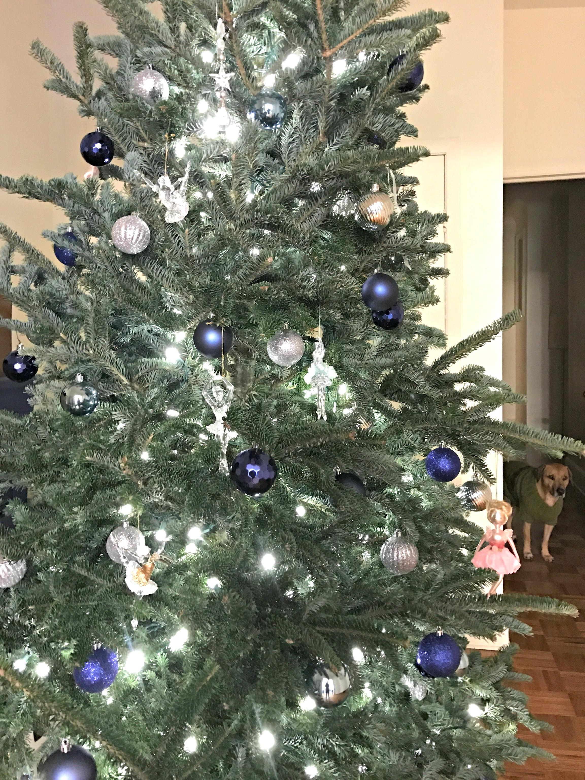 hesington-christmas-tree-2016