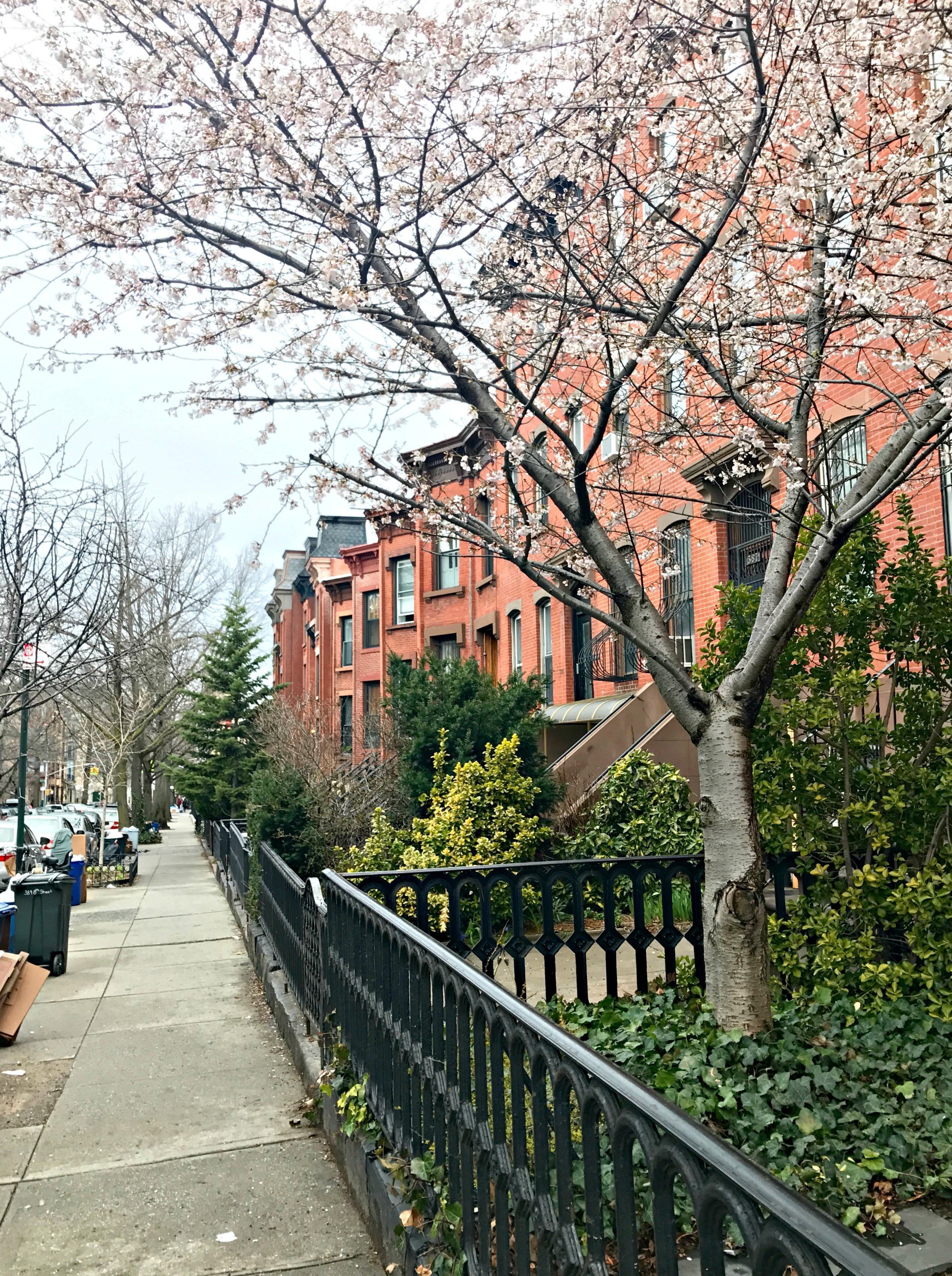 park slope brooklyn spring