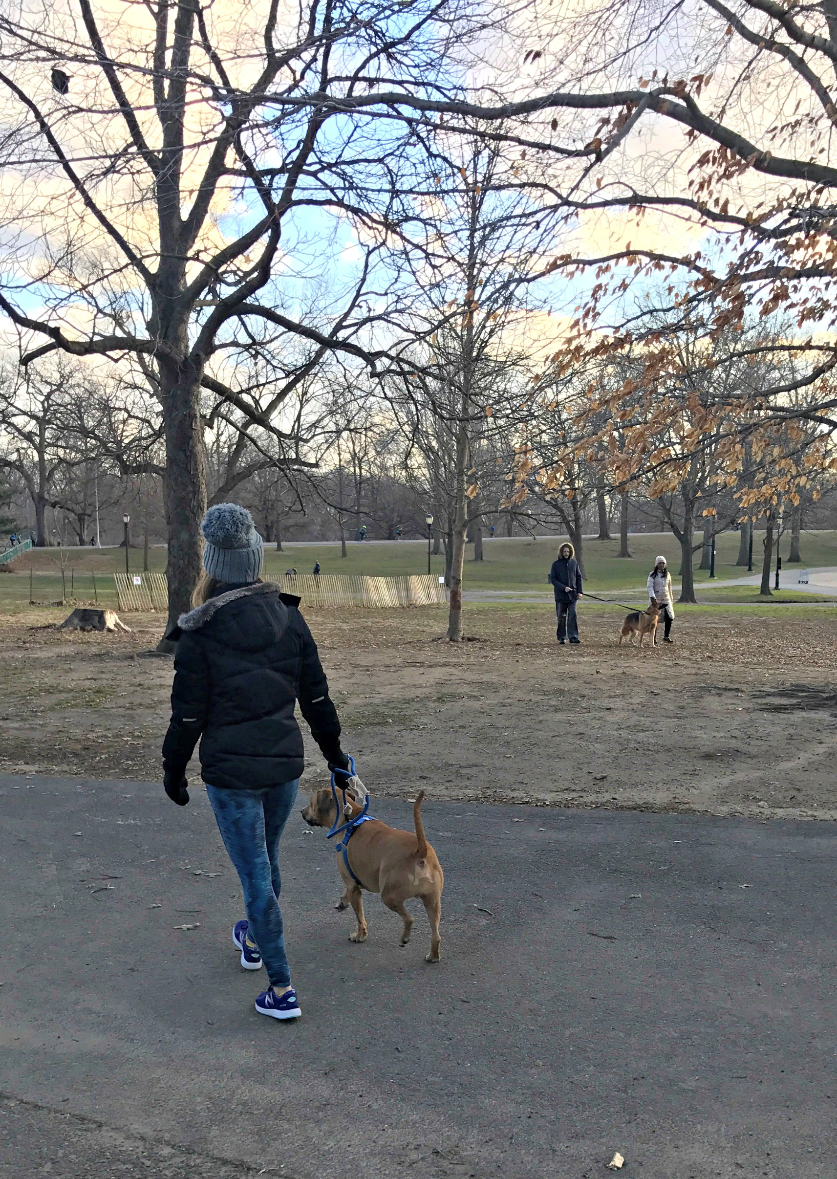 prospect park with roadie