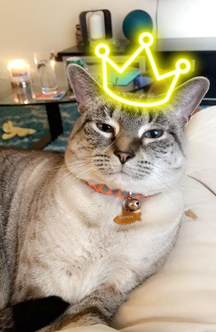 queen aspen