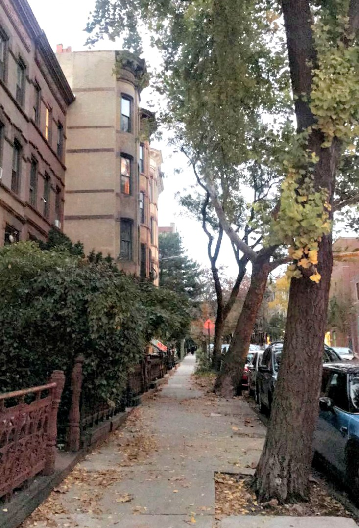 walk in park slope fall