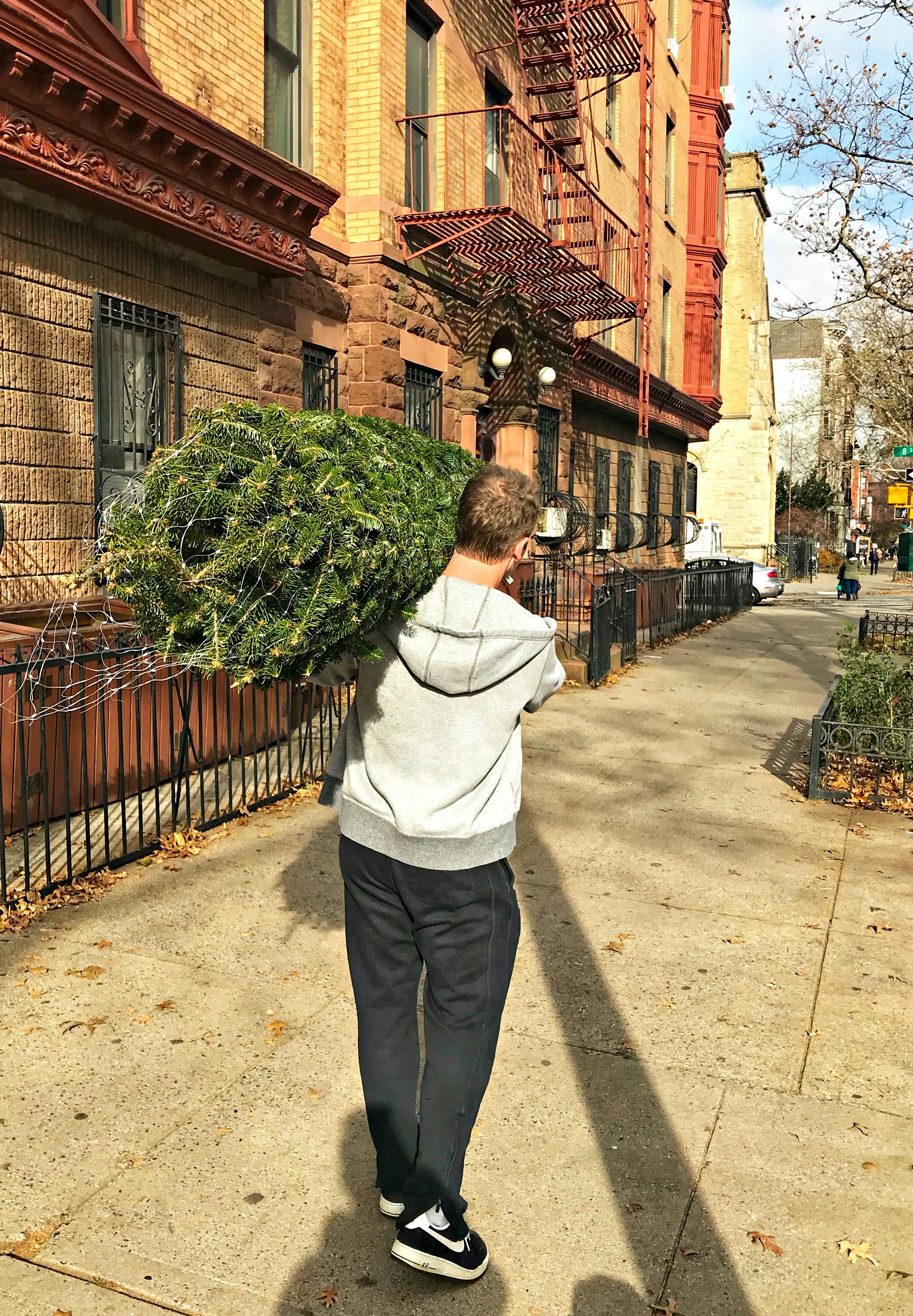 scott bringing home christmas tree