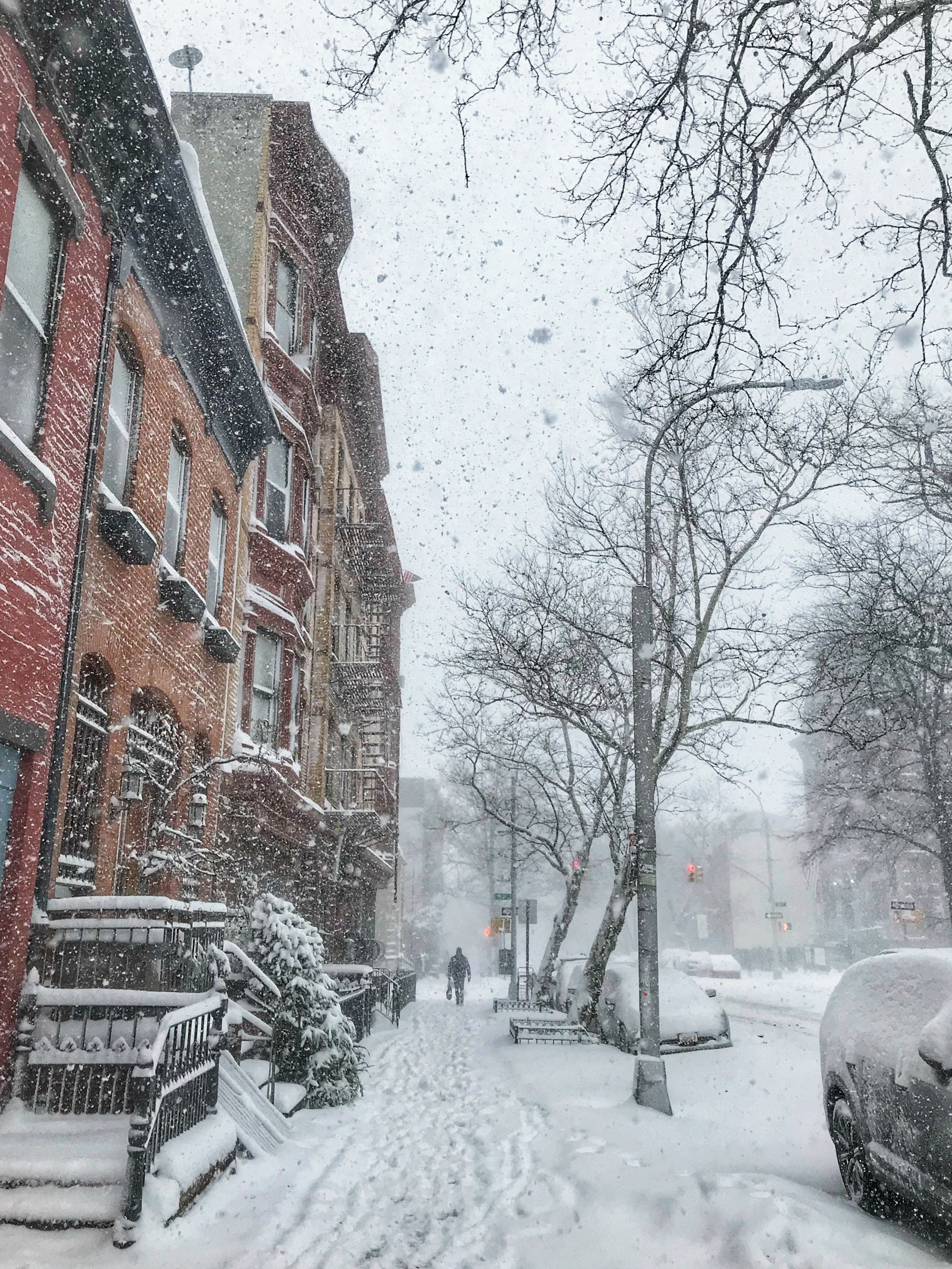 bomb cyclone brooklyn nyc