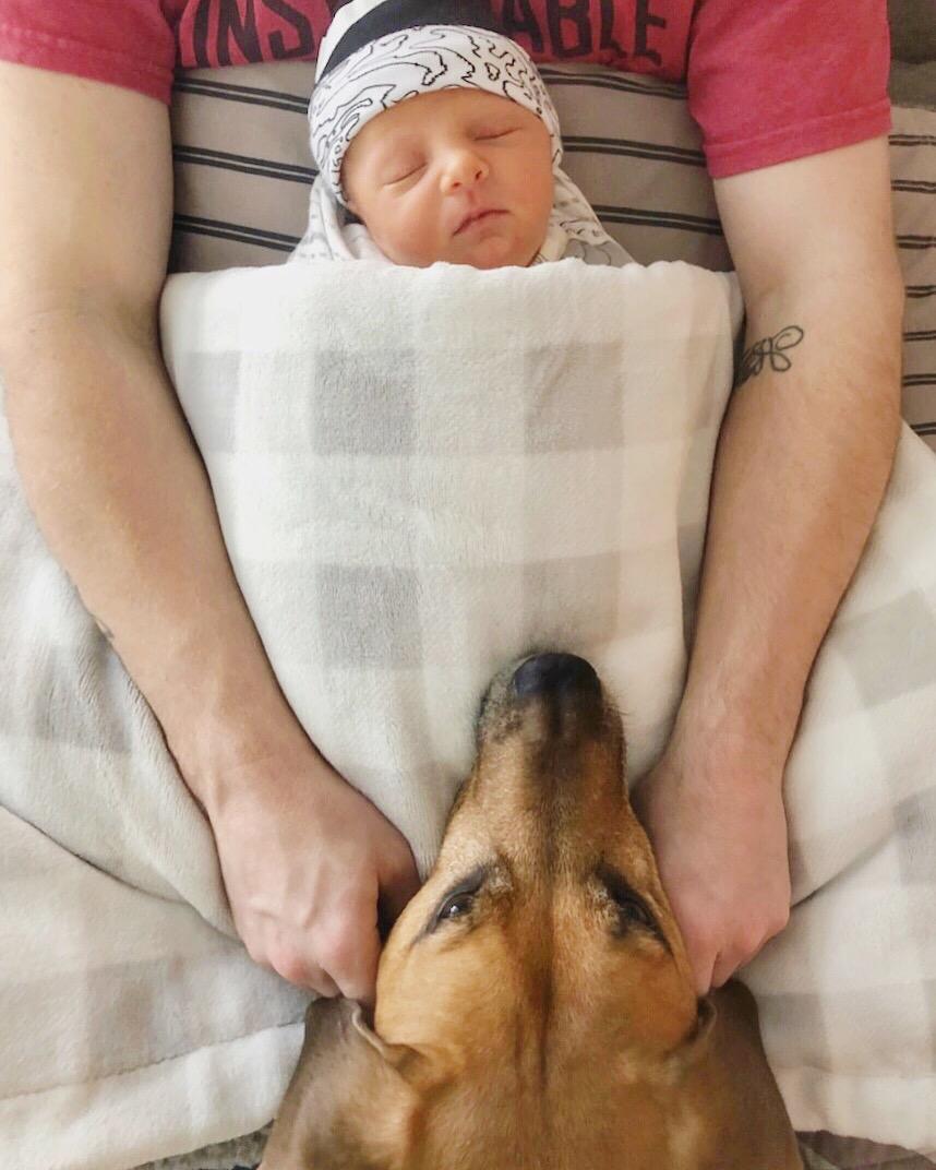skyler and roadie newborn