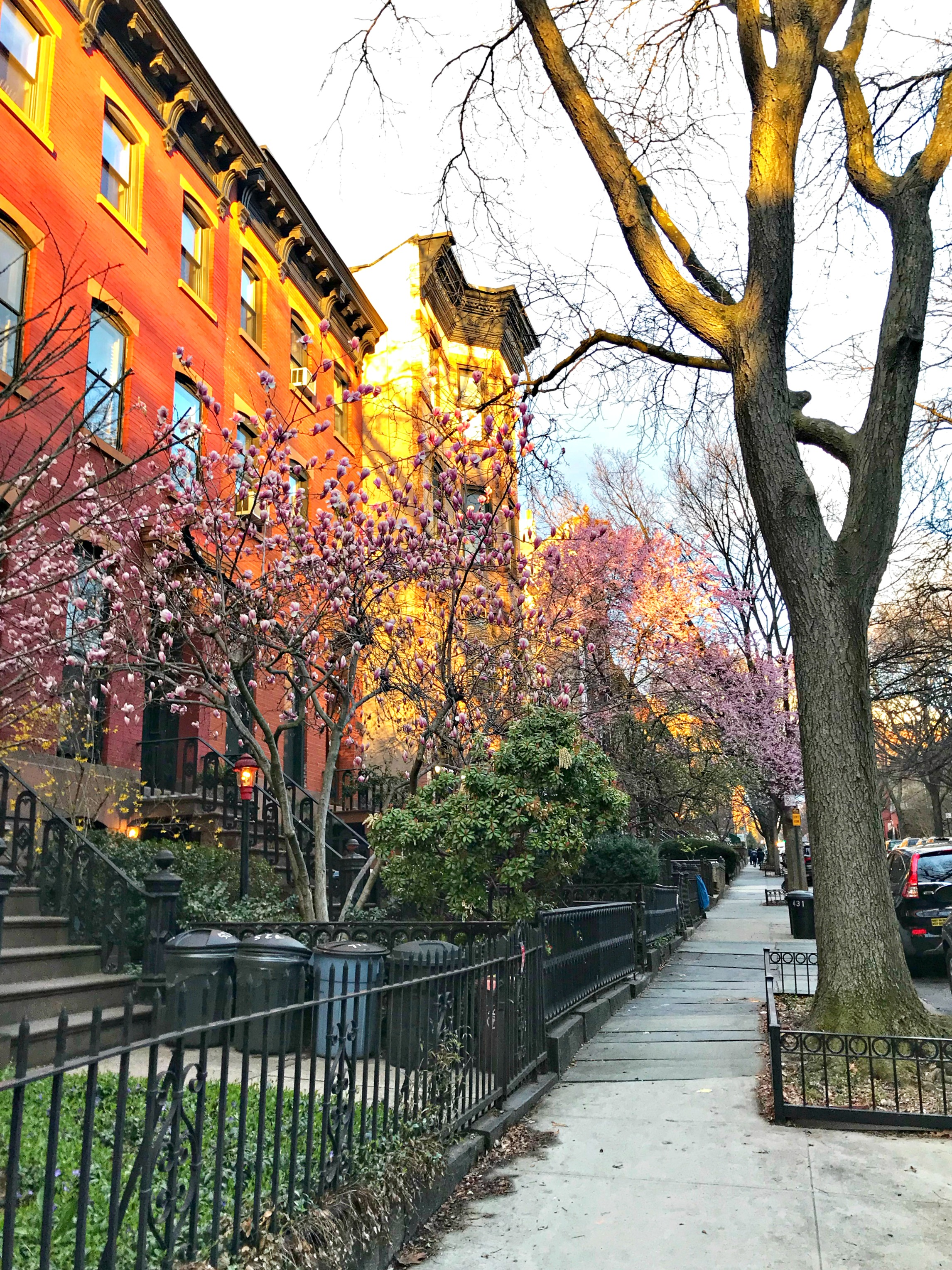 sunset walk park slope brooklyn