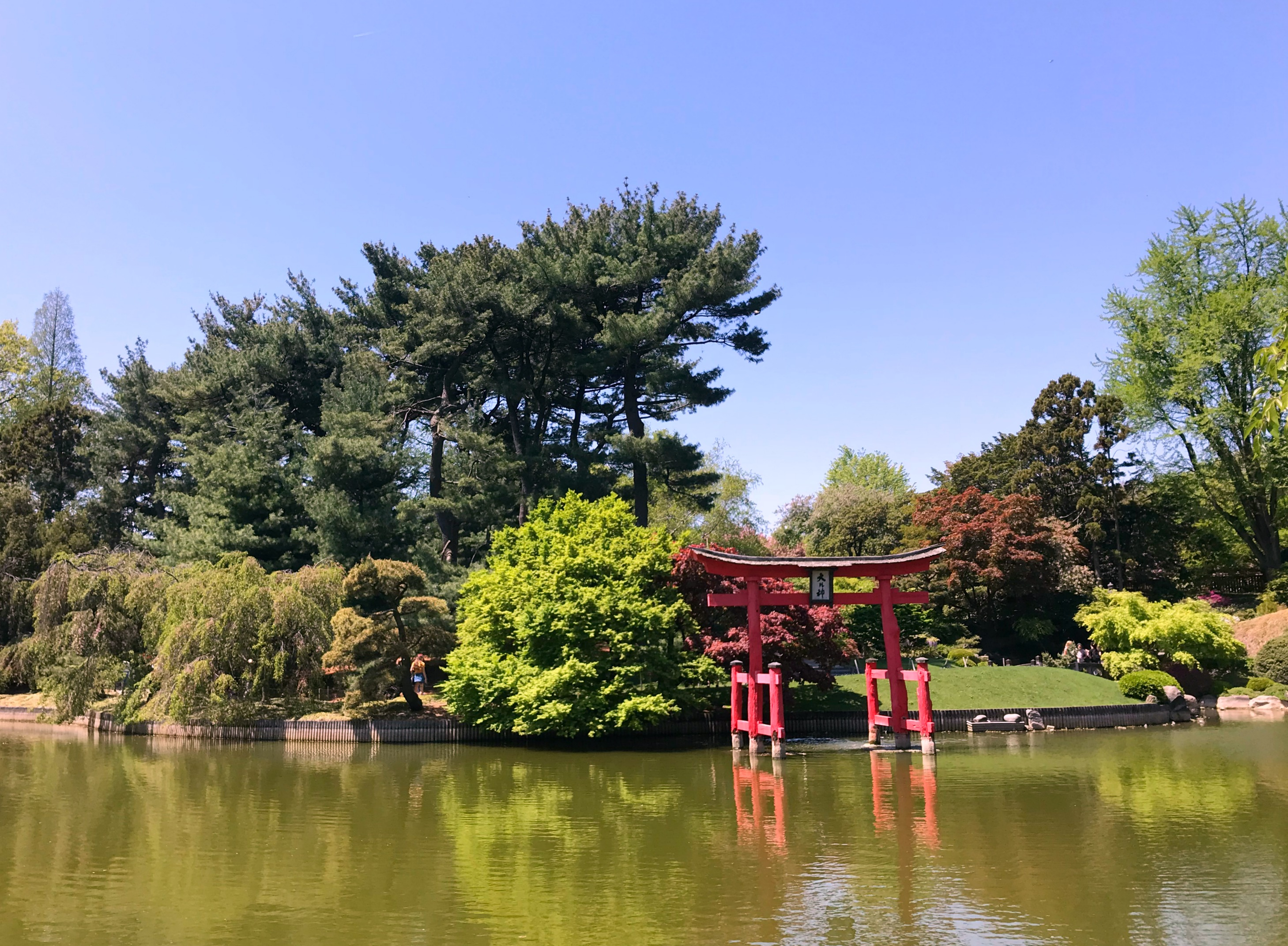 brooklyn botanic garden view