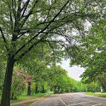 running loop prospect park