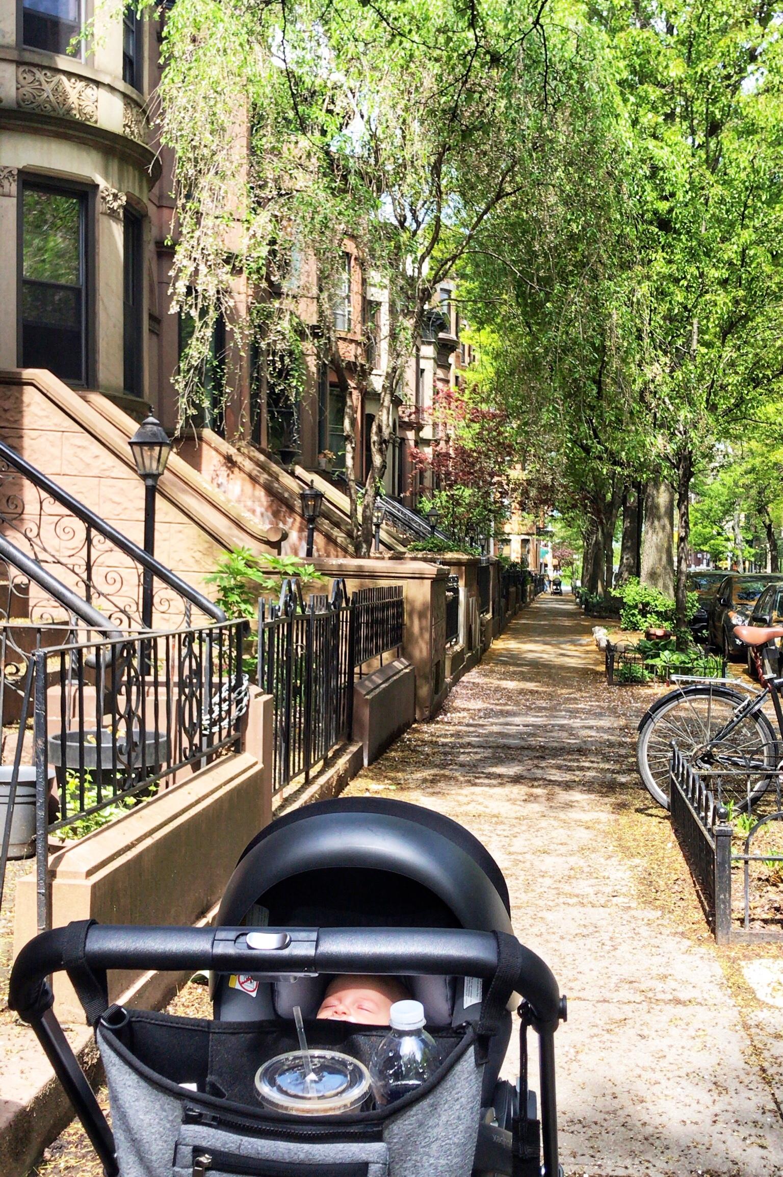 walking with skyler in neighborhood