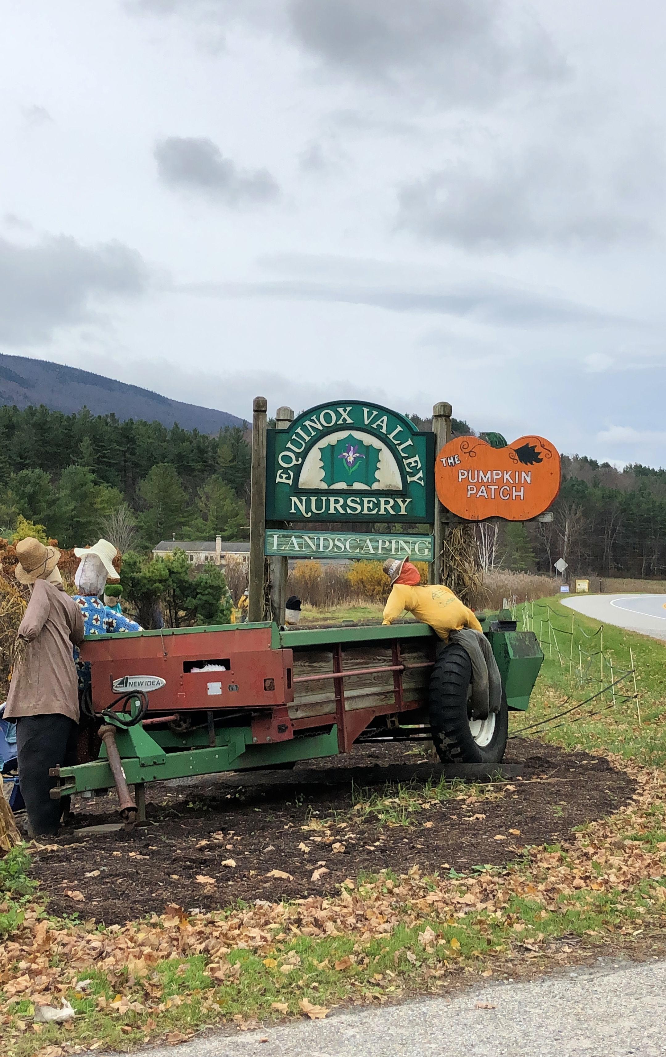 equinox pumpkin patch