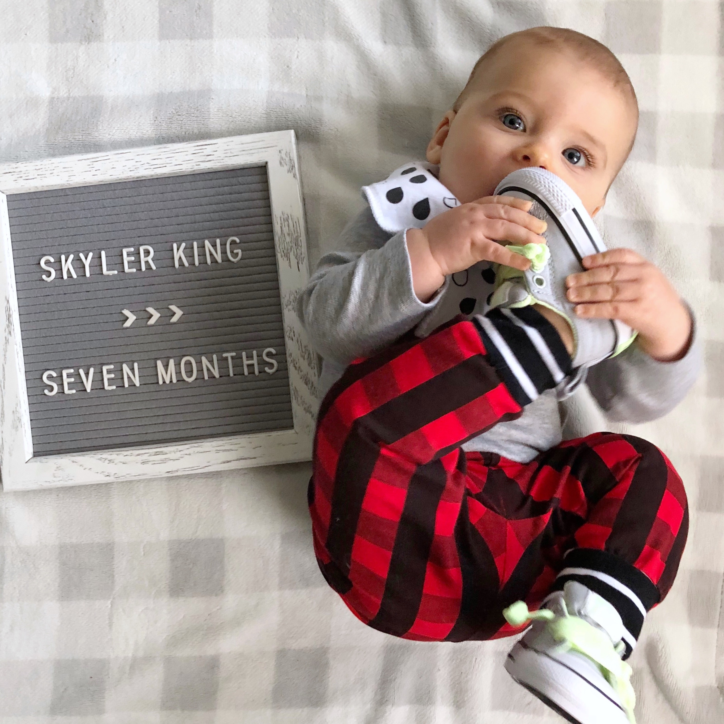 skyler 7 month photo 1