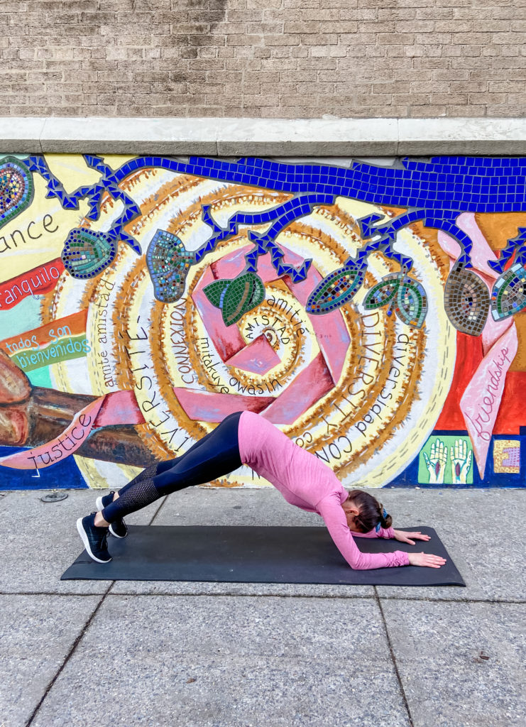 forearm plank to dolphin exercise