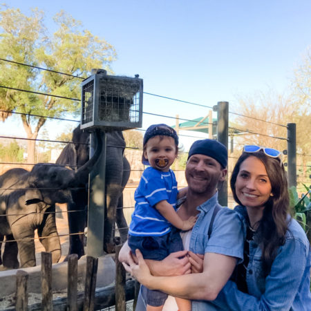 hesington family with elephants