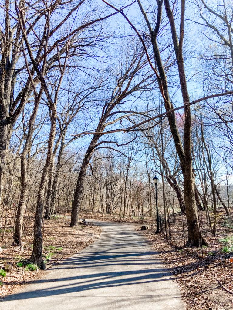 prospect park trails