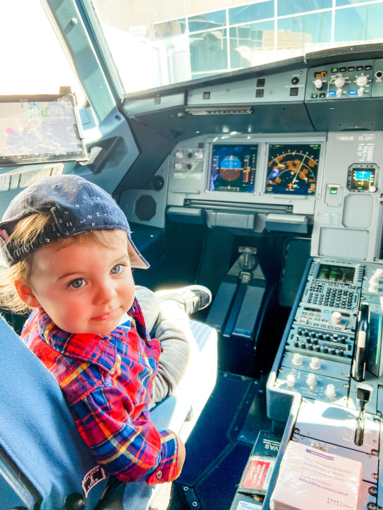 skyler in charge of the plane
