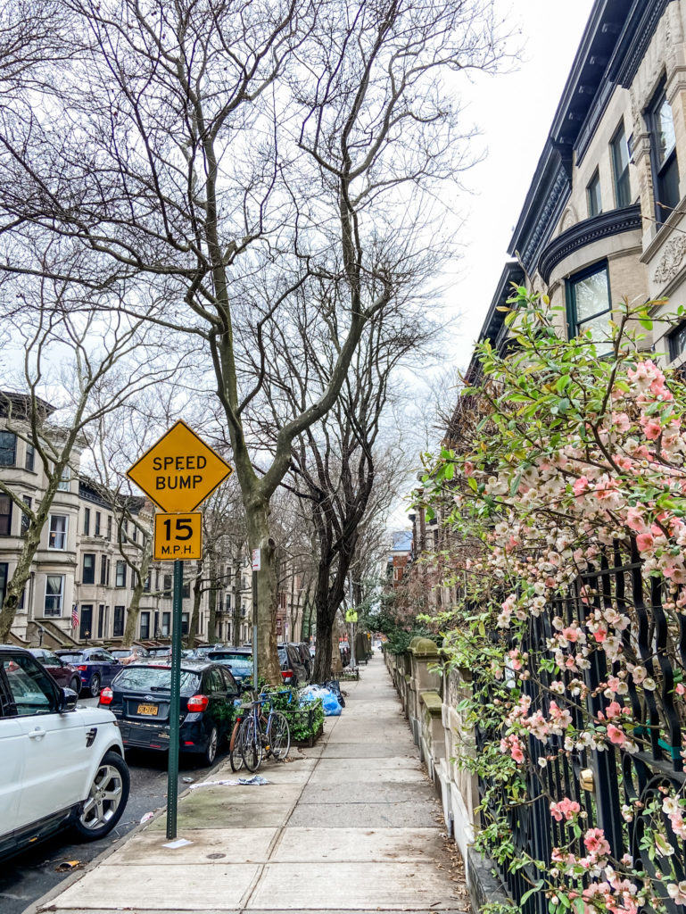 park slope walk