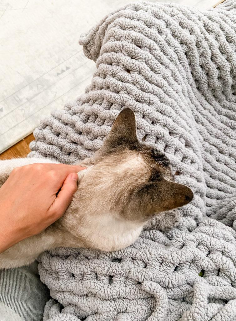 aspen snuggles