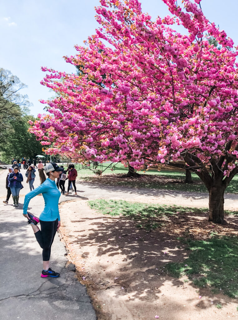 heather run with cherry blossom