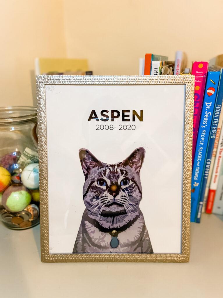 pet memorial photo - Aspen