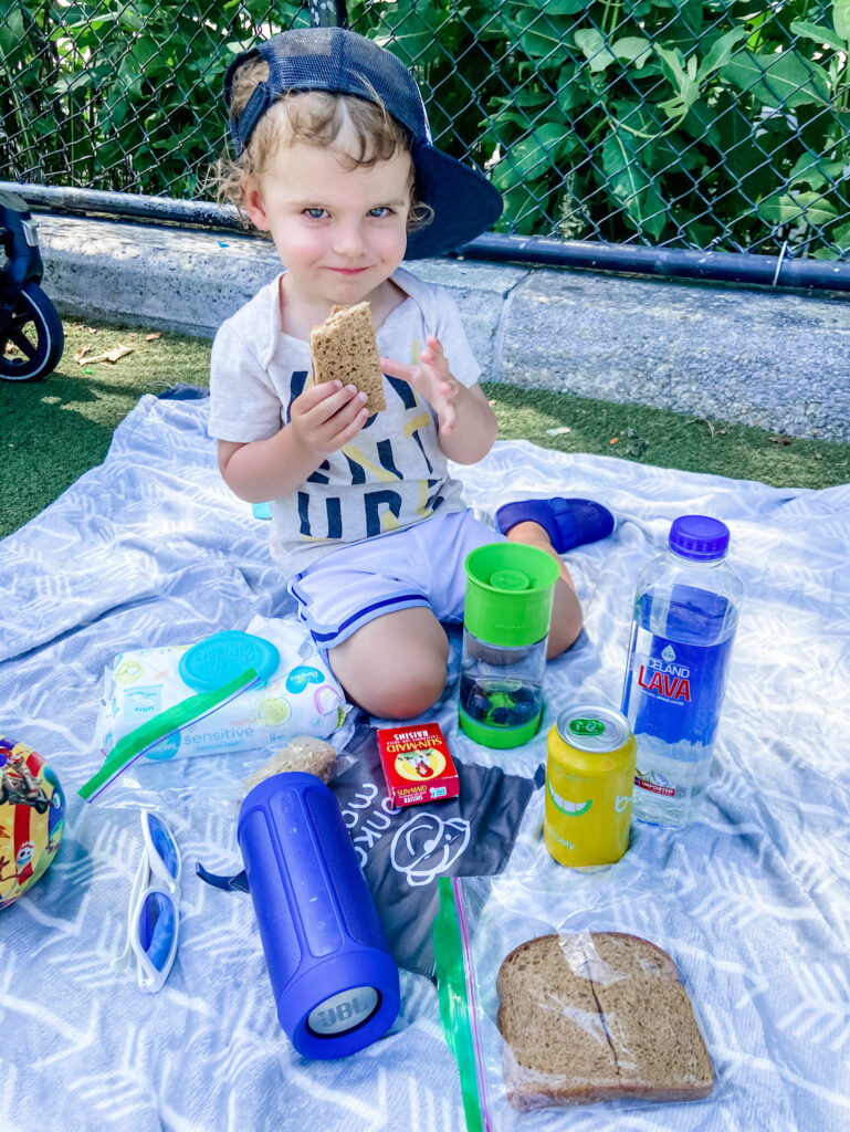 picnic with skyler