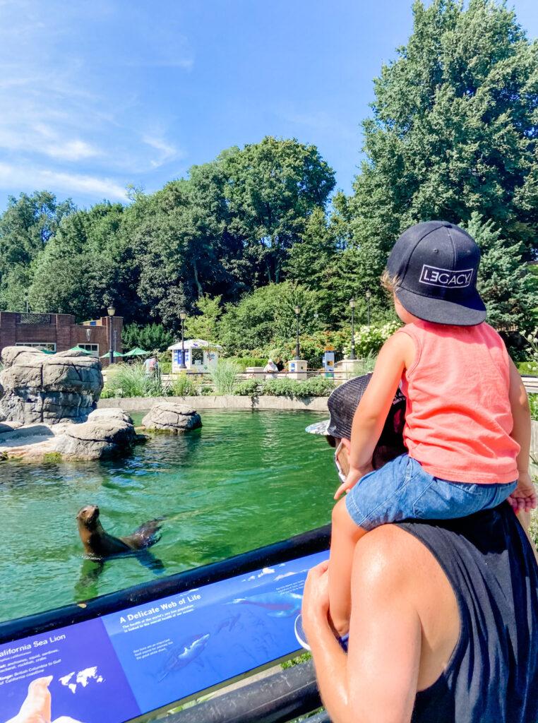 skyler and scott prospect park zoo