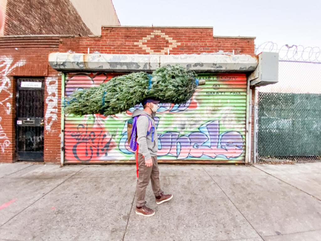 Scott carrying christmas tree