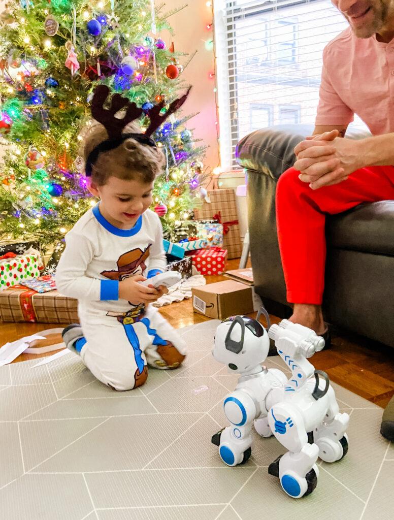 Skyler robot dog 2020