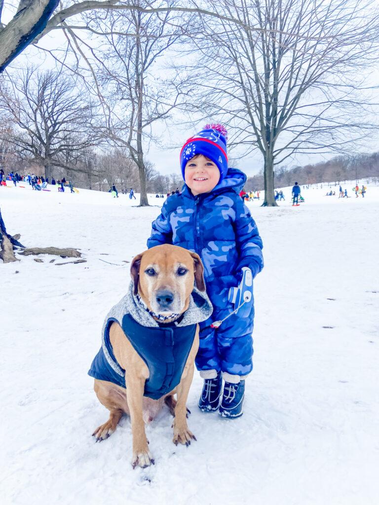 Skyler and Roadie in the snow - Prospect Park