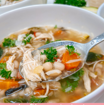 Healthy Chicken, Bean and Vegetable Soup