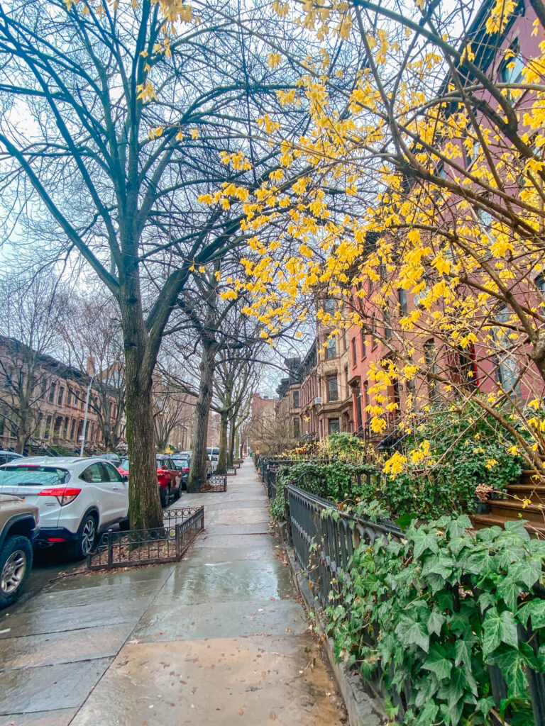 Spring in Park Slope, Brooklyn